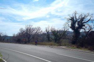 Buljarica - Maslinjak route