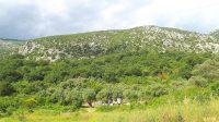 Buljarica Maslinjak panorama